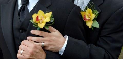 alianc3a7as-gay-marriage-poll-misteremister